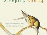 sleeping-funny