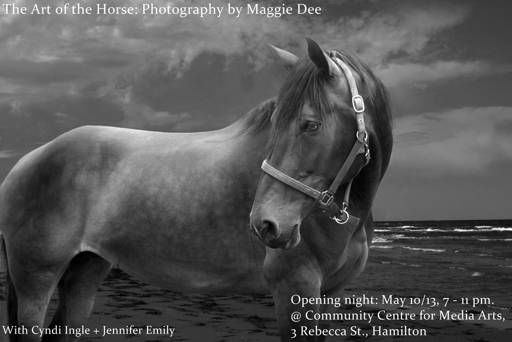 The Art of the Horse: Photography by Maggie Dee; with Cyndi Ingle, and Jennifer Emily, until June 8/13