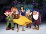 D27_06.SNOW WHITE WISHES &Dwarfs