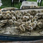 Tray of oysters presented by Jake's Grill and Oyster House
